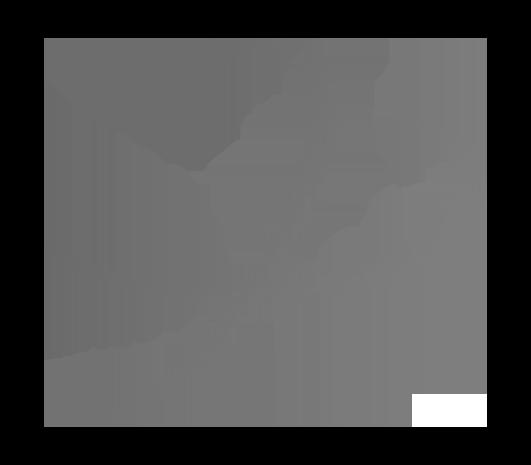 Logo ViaXoft